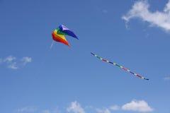 цветастое parasail змея Стоковые Изображения RF
