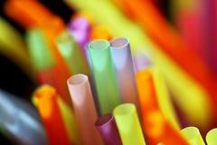 цветастые выпивая сторновки стоковые фото
