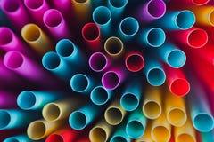цветастые выпивая сторновки Стоковая Фотография RF