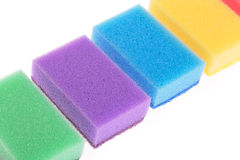 цветастые губки Стоковые Изображения RF