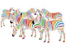 Цветастые зебры иллюстрация вектора