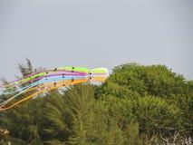 цветастые змеи стоковое изображение rf