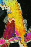 цветастые иглы макроса льда Стоковое Изображение