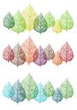 Цветастые листья, комплект вектора Стоковое Изображение RF