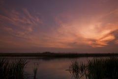 Цветастые облака Стоковые Изображения RF
