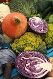 цветастые овощи Стоковая Фотография RF