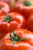 цветастые овощи Стоковое фото RF