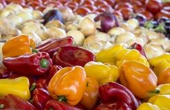 Цветастые овощи стоковое фото