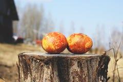 цветастые пасхальные яйца Стоковые Фотографии RF
