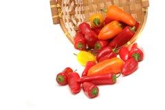 цветастые перцы стоковое изображение rf