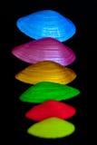 Цветастые раковины Стоковая Фотография