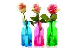 цветастые розовые вазы роз Стоковые Фото