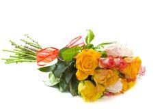 цветастые розы Стоковое Фото