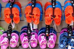 цветастые установленные flops flip Стоковое Изображение RF