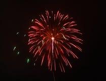 Цветастые феиэрверки в ночном небе Стоковые Фото