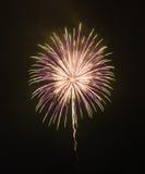 Цветастые феиэрверки в ночном небе Стоковые Фотографии RF