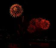 Цветастые феиэрверки на черном небе Стоковые Изображения RF