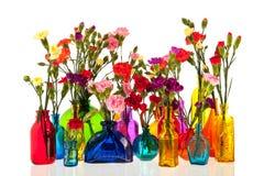 Цветки гвоздики в бутылках Стоковое Изображение RF