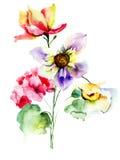 цветастые цветки одичалые Стоковое Изображение