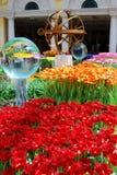 цветастые цветки Стоковые Изображения RF