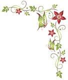 Цветастые цветки Стоковое Фото