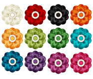 цветастые цветки Стоковое фото RF