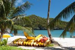 Цветастые kayaks на тропическом пляже, Таиланде Стоковые Изображения