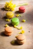 цветастые macaroons Стоковое Изображение RF