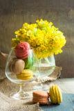 цветастые macaroons Стоковая Фотография