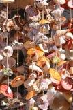 цветастые seashells Стоковая Фотография