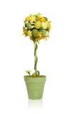 цветастый вал пасхального яйца Стоковое Фото