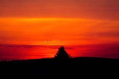 цветастый вал текста захода солнца космоса силуэта Стоковое Изображение RF