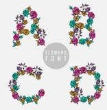 цветастый вектор иллюстрации купели цветка Стоковое Фото