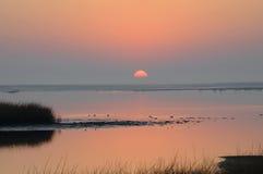 цветастый восход солнца Стоковое Изображение RF