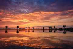цветастый восход солнца Стоковое фото RF