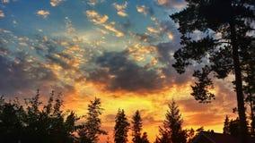 цветастый заход солнца Стоковое Изображение RF