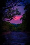 цветастый заход солнца Стоковые Фото
