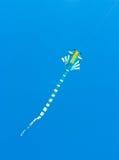Цветастый змей Стоковое Фото