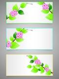 цветастый комплект ярлыков Стоковое Изображение RF