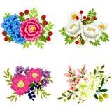 цветастый комплект цветка элементов конструкции Стоковое Изображение RF