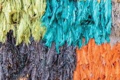 Цветастый клочковатый шелк Стоковые Фотографии RF