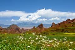Цветастый ландшафт горы стоковое изображение