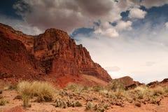 цветастый ландшафт пустыни Стоковая Фотография RF