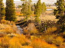 цветастый ландшафт сельской местности Стоковое Изображение