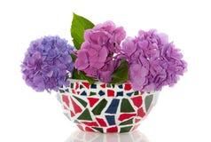 цветастый пурпур hydrangena стоковое фото rf