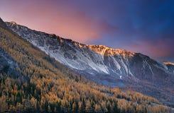 цветастый рассвет стоковая фотография rf