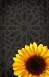 Цветастый солнцецвет на абстрактной предпосылке Стоковые Изображения RF