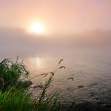 Цветастый туманный рассвет на озере Стоковая Фотография