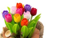 Цветастый тюльпан на цветочном горшке в мешке Стоковые Изображения