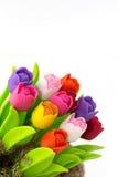 Цветастый тюльпан на цветочном горшке в мешке Стоковые Фотографии RF